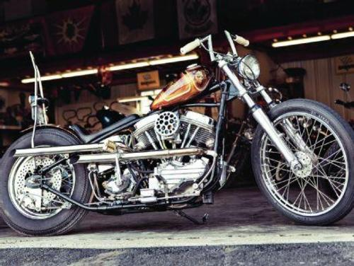 sportster 883 service manual free download
